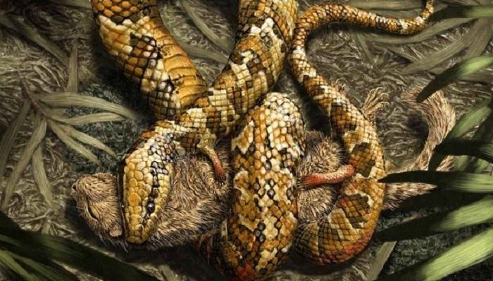 Serpiente con Patas – ¿Leyenda antigua o realidad moderna?