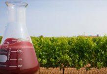 abono líquido orgánico