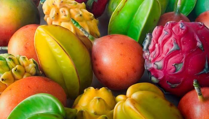 ▷ Morfología Reproductiva ➕ Clasificación y Función del Fruto ◁