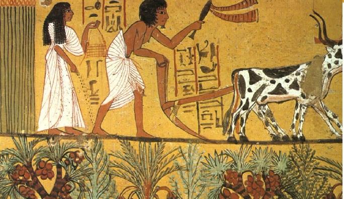 ¿Cómo surgió la Agricultura y la Ganadería? ⇨ Producción e Historia