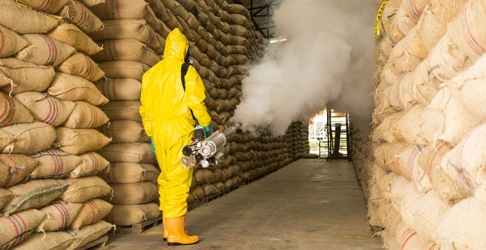 🔥 Fumigación de Plagas ⇨ Alternativa de Control en el Campo Agrícola
