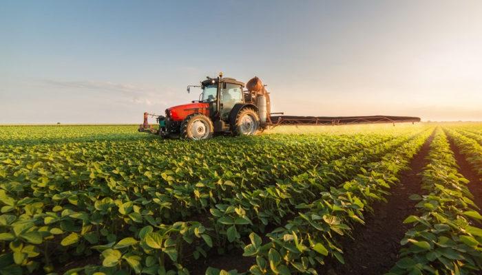 Aprende las  ⚡ Diferencias entre la Agricultura Intensiva y Extensiva