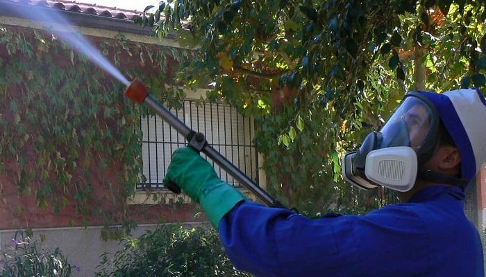 fumigacion de plagas en Madrid