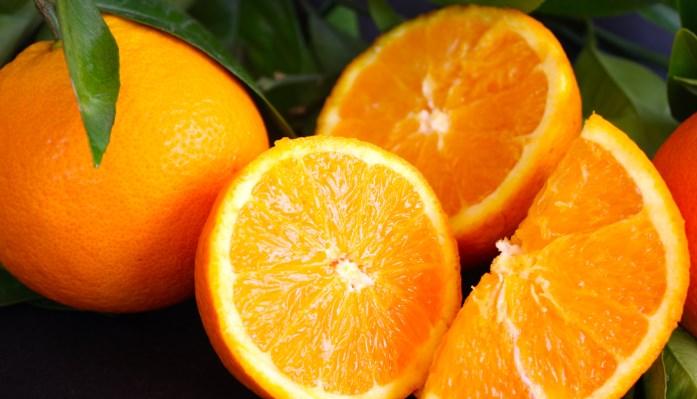 Poder Destructivo de las Plagas de la Naranja ⚠️ Enfermedades comunes