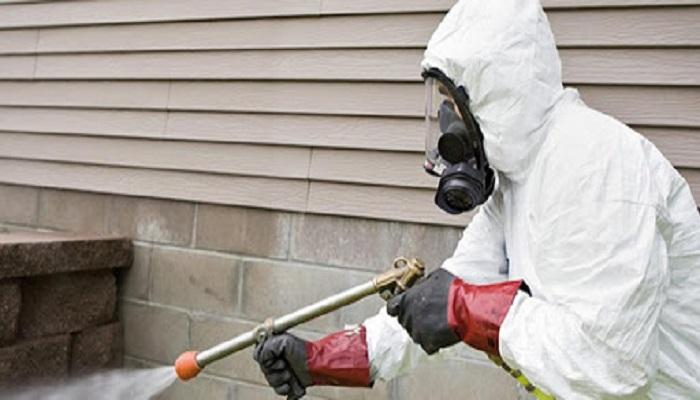 empresas desinfección de plagas