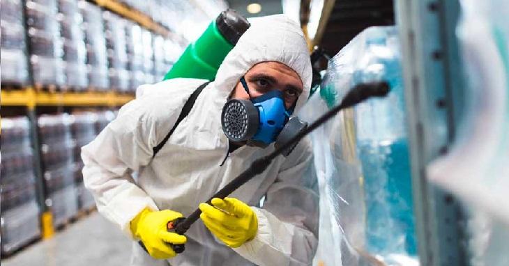 CONTROL de PLAGAS en GIRONA – Empresas y Detalles Útiles