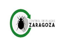 CONTROL de PLAGAS en ZARAGOZA【Empresas + Presupuesto】