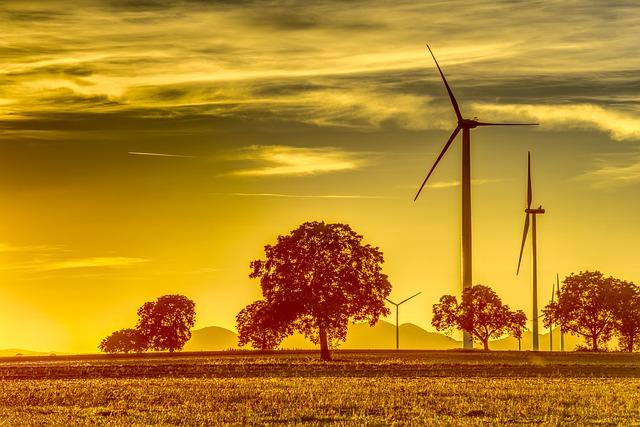 Ventajas de la energía Eólica sobre el Ecosistema