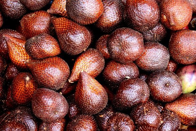 fruta tropical exótica Salak