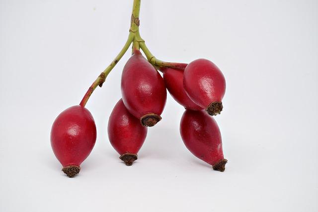 fruta del diablo