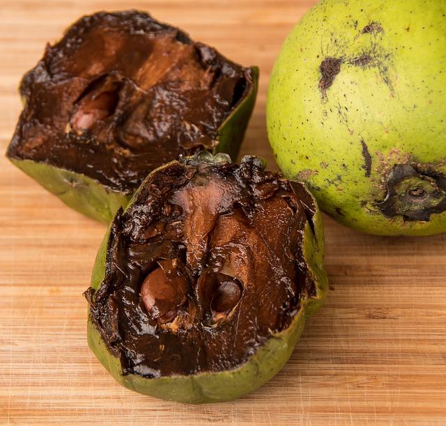 fruta tropical exótica zapote negro