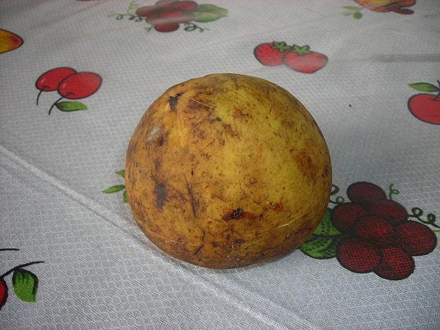 fruta tropical exótica platonia