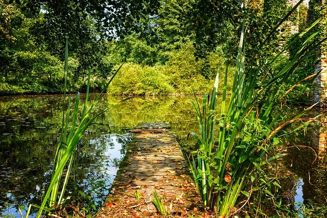 paisaje de gestión ambiental en un lago