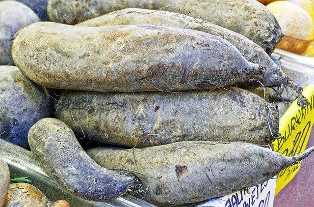 los tubérculos, batata