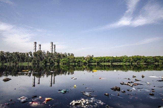 consecuencias de la pérdida de la biodiversidad